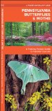 Pennsylvania Butterflies & Moths: A Folding Pocket Guide to Familiar Species (Pocket Naturalist Guide Series)